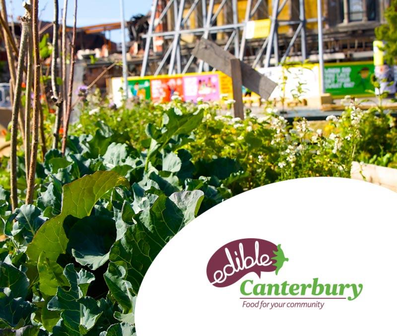 AF-Edible-Canterbury-01